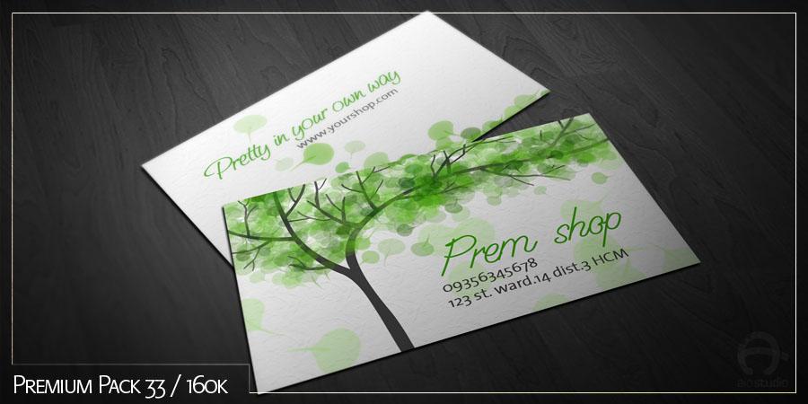Mẫu thiết kế name card có sẵn - Premium Pack 33