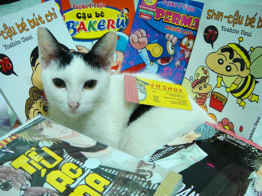 Pu Shop Manga