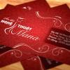 Áo Dài Mana Card Visit