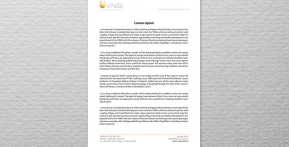 VNIS – Viet Nam Innovative Services – Letterhead